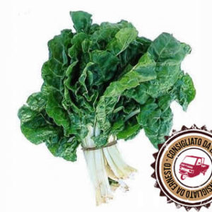 spinaci a Km 0