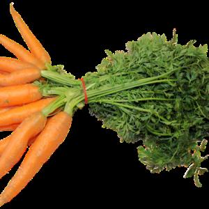 carote a Km 0